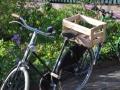 Fahrräder 02
