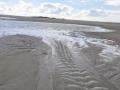 Wattenmeer 03